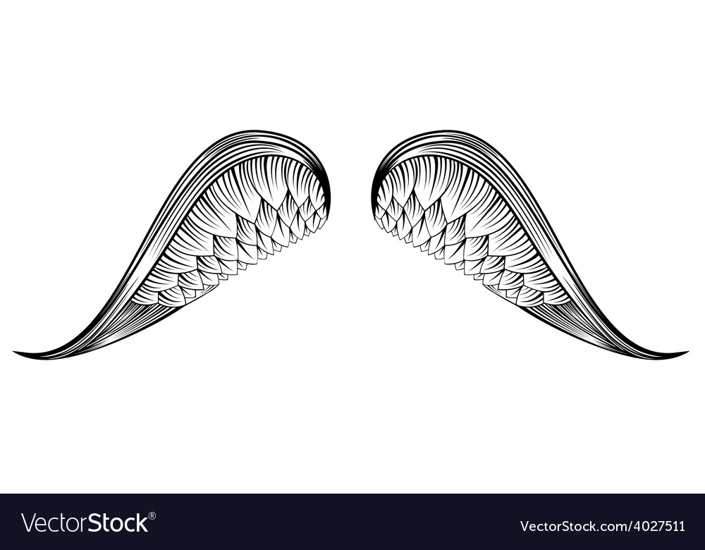 Sketch angel wings hand drawn vector | Price: 1 Credit (USD $1)