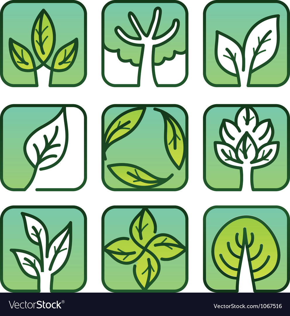 Eco labels - green nature signs vector | Price: 1 Credit (USD $1)