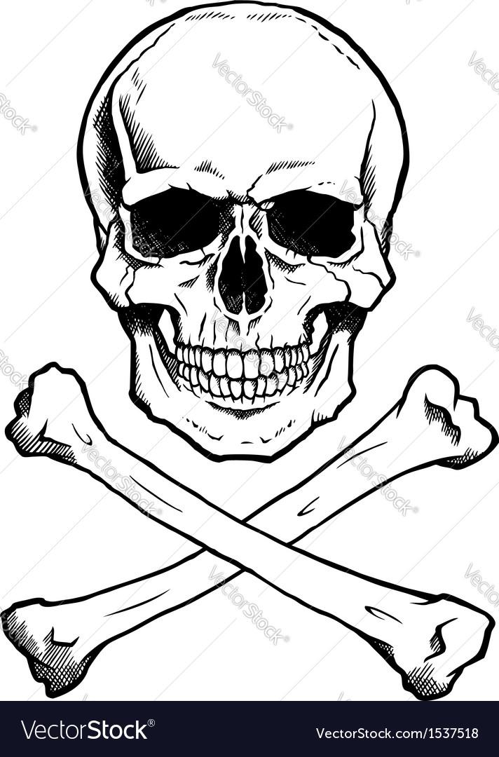Blackwhite human skull and crossbones vector | Price: 1 Credit (USD $1)