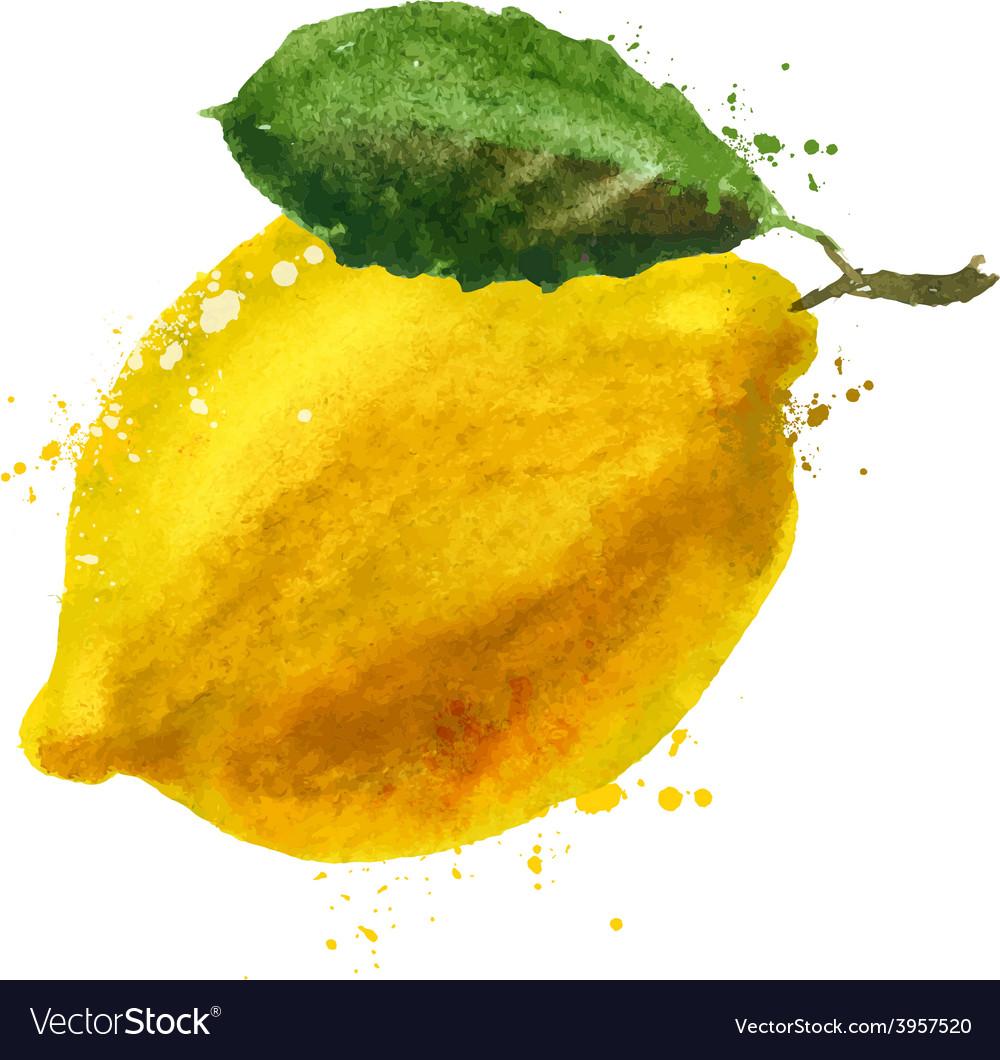 Lemon logo design template fruit or food vector | Price: 1 Credit (USD $1)