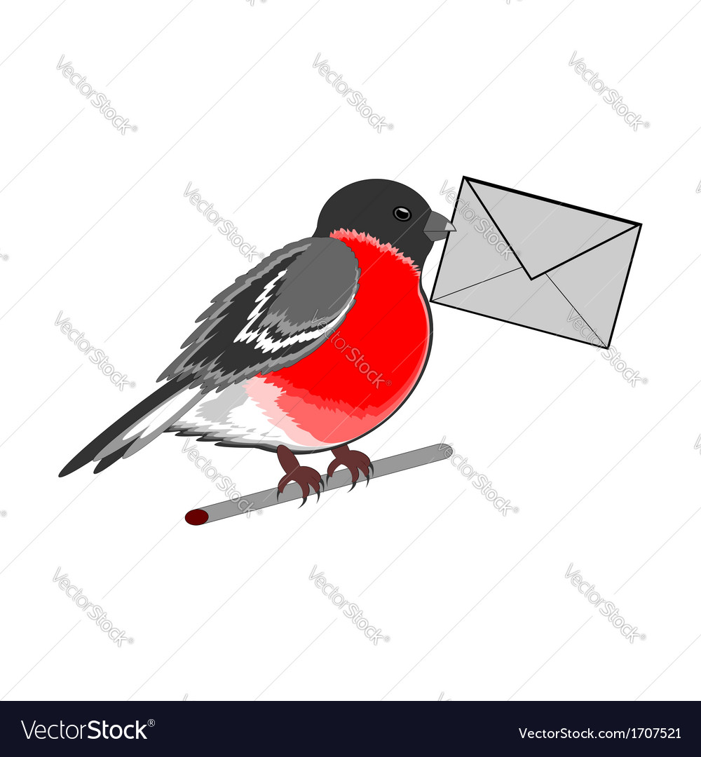 A funny bullfinch with a letter vector   Price: 1 Credit (USD $1)