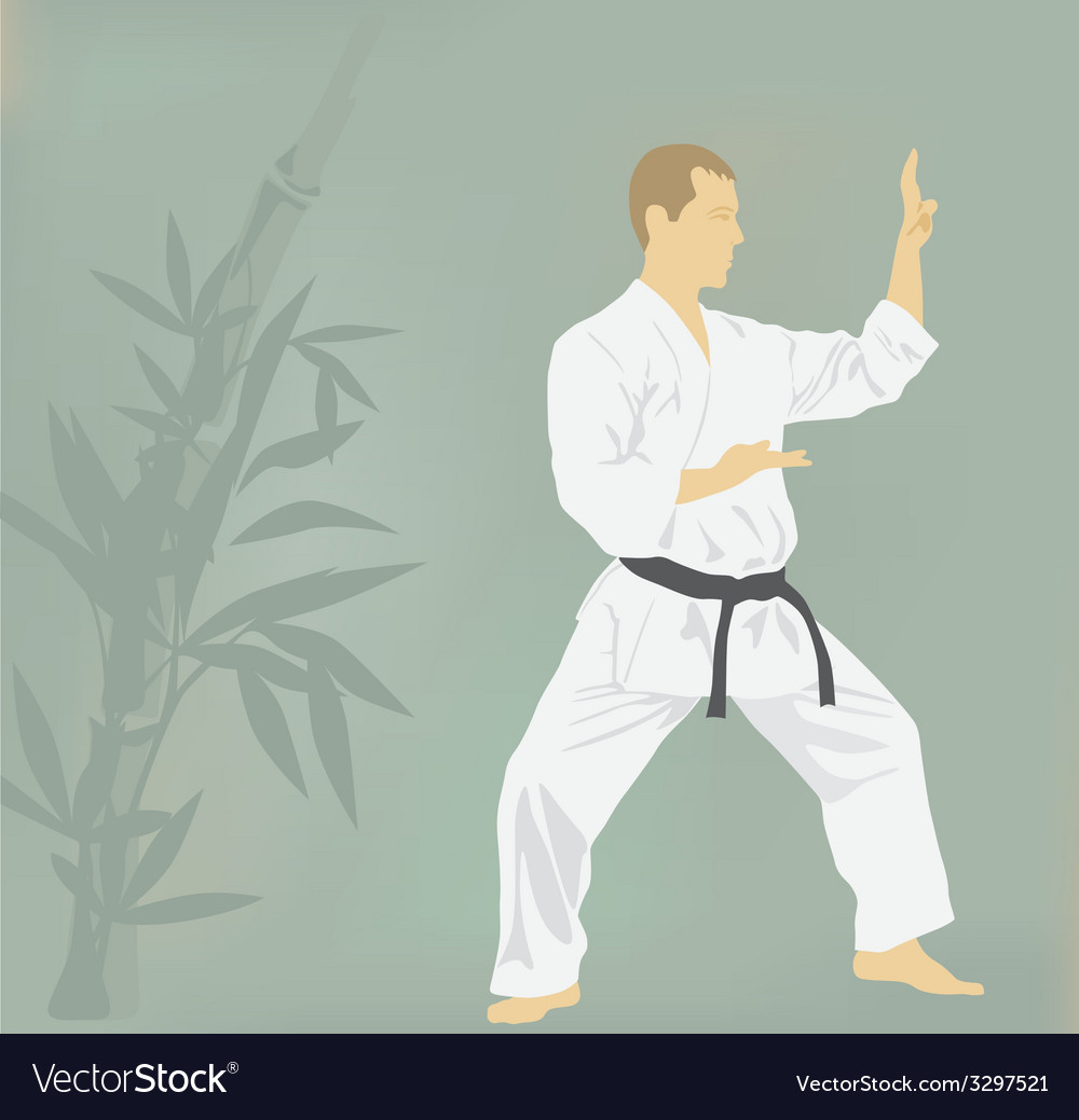 The the man is engaged in karate vector | Price: 1 Credit (USD $1)