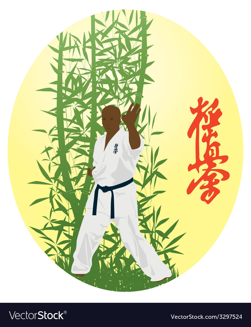 The the man shows karate on a bright background vector | Price: 1 Credit (USD $1)