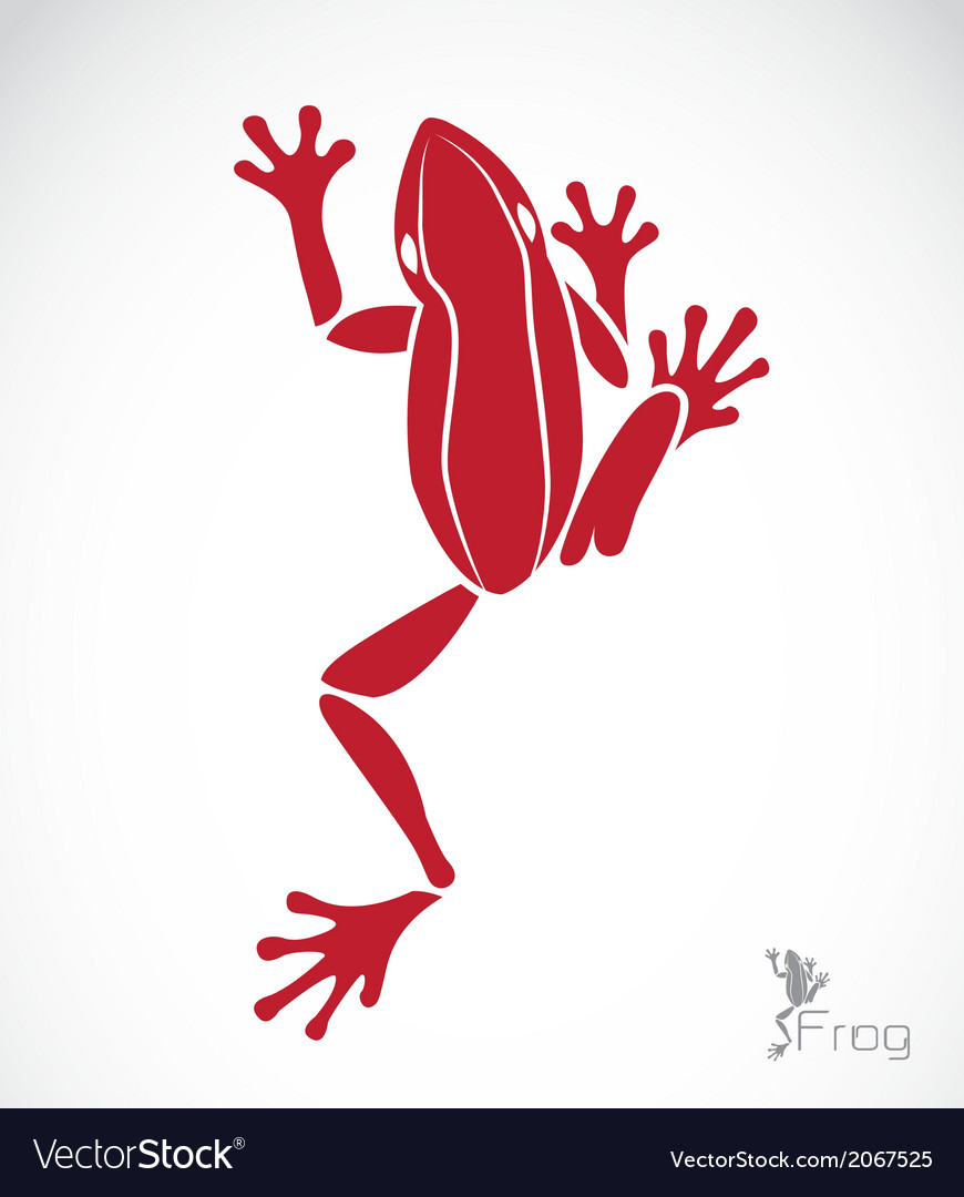 Image of a frog vector | Price: 1 Credit (USD $1)