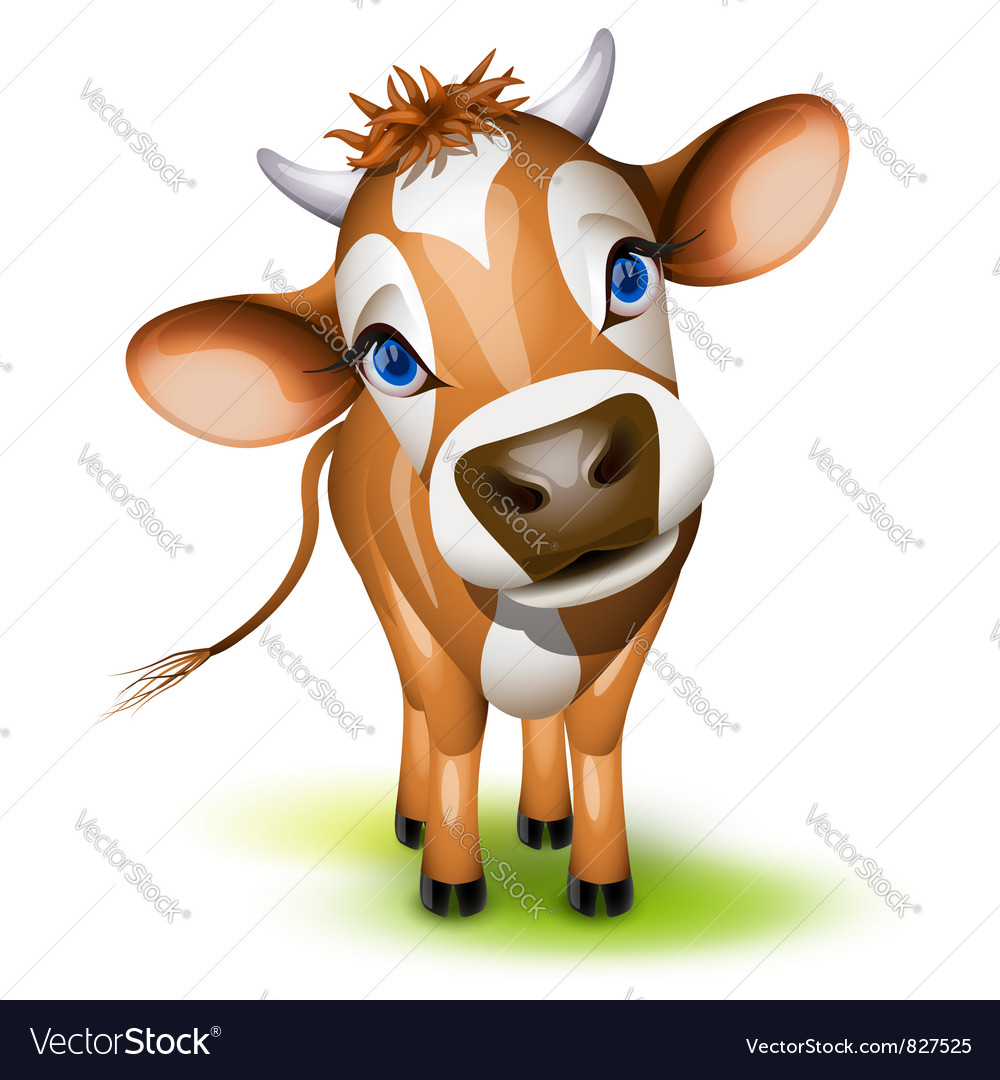 Jersey cow vector | Price: 3 Credit (USD $3)