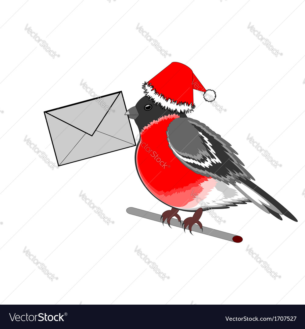 A christmas bullfinch with a letter vector | Price: 1 Credit (USD $1)