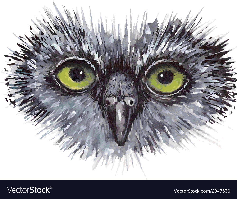 Face owl concept design bird are isolated on white vector | Price: 1 Credit (USD $1)