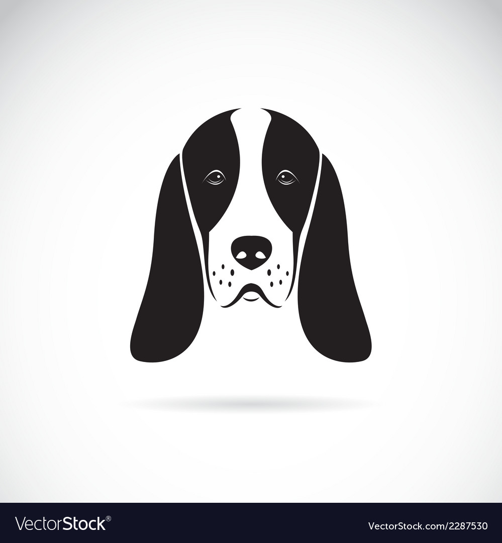Image of an basset hound head vector | Price: 1 Credit (USD $1)