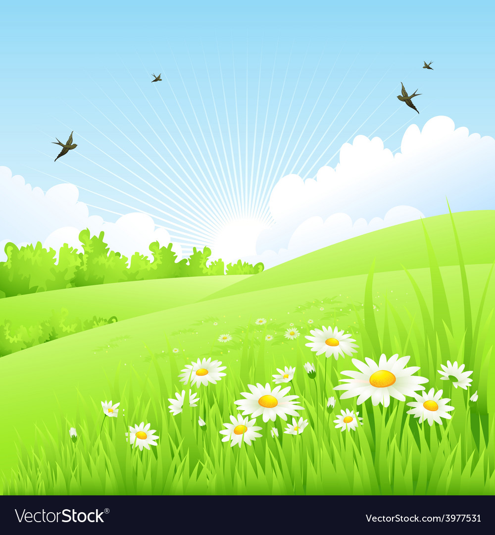 Clean spring amazing scenery vector | Price: 3 Credit (USD $3)
