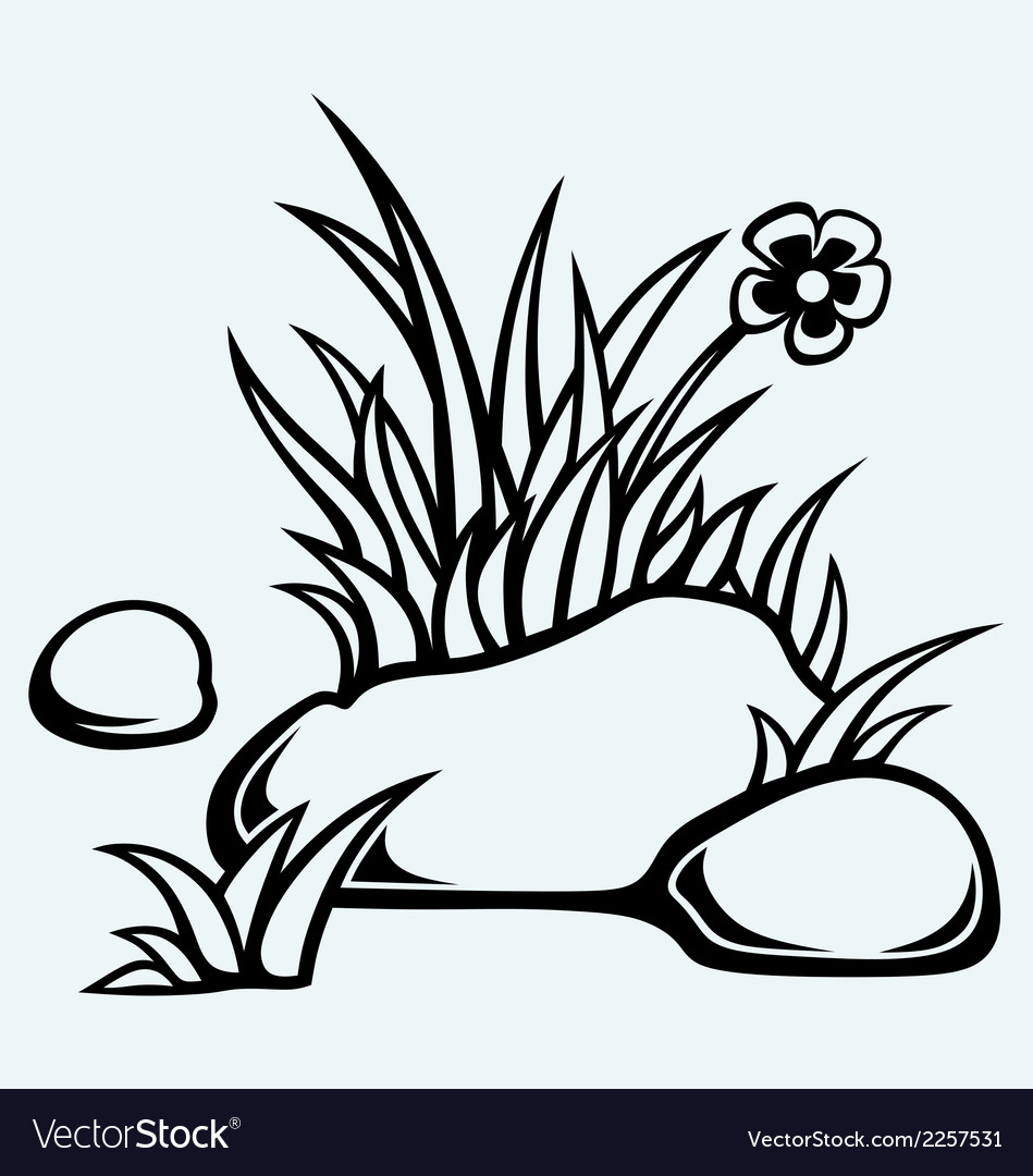 Grass in stones vector | Price: 1 Credit (USD $1)