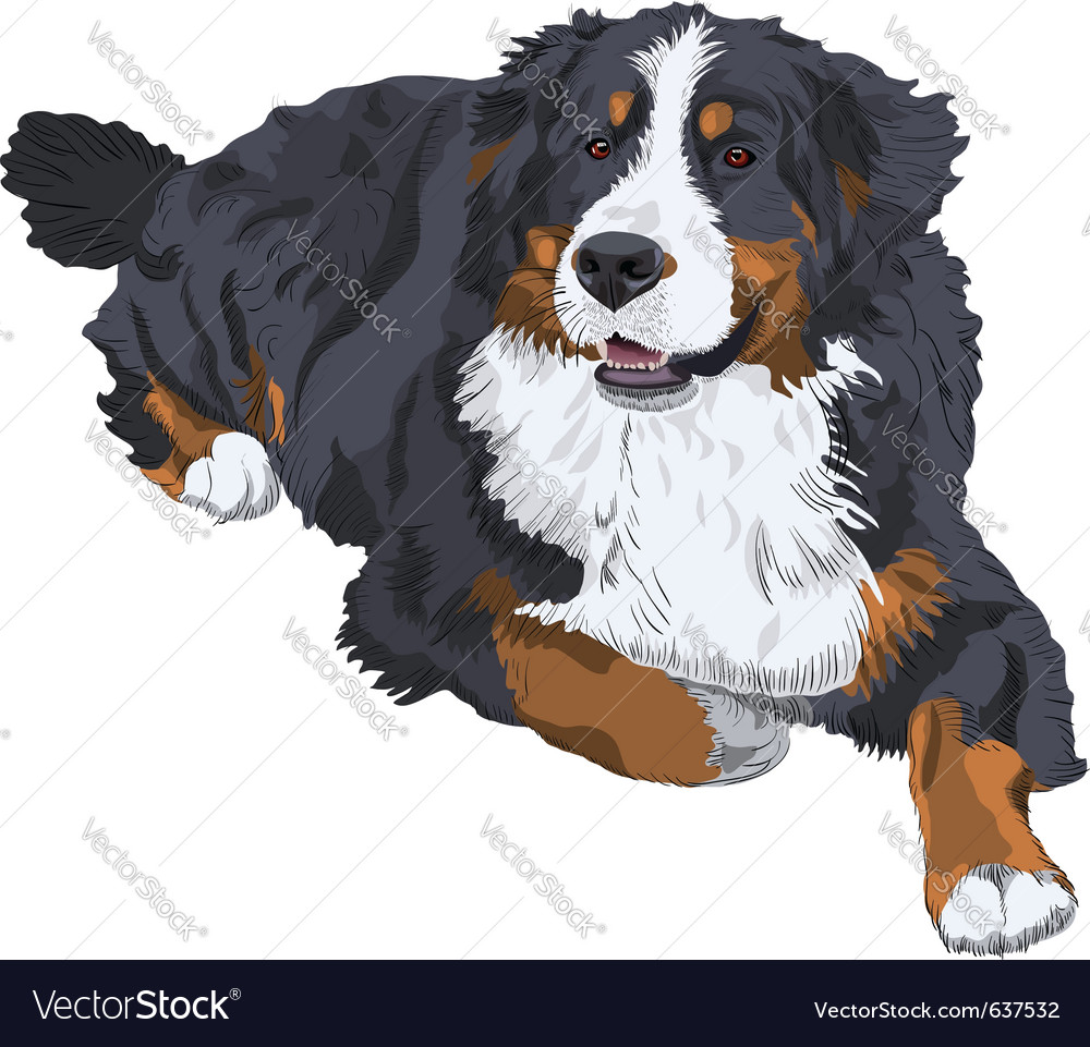 Dog breed vector | Price: 3 Credit (USD $3)