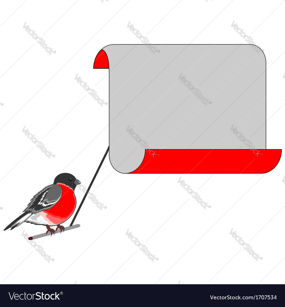 A bullfinch with a big blank paper vector | Price: 1 Credit (USD $1)