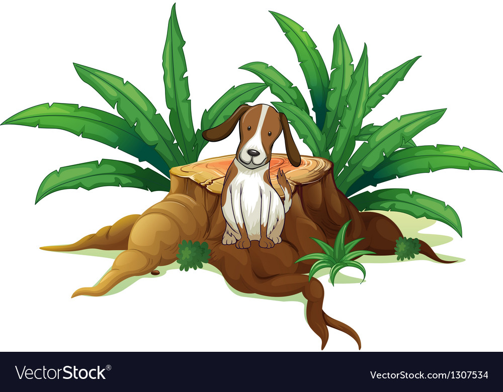 A dog sitting at the root of a chopped tree vector   Price: 1 Credit (USD $1)