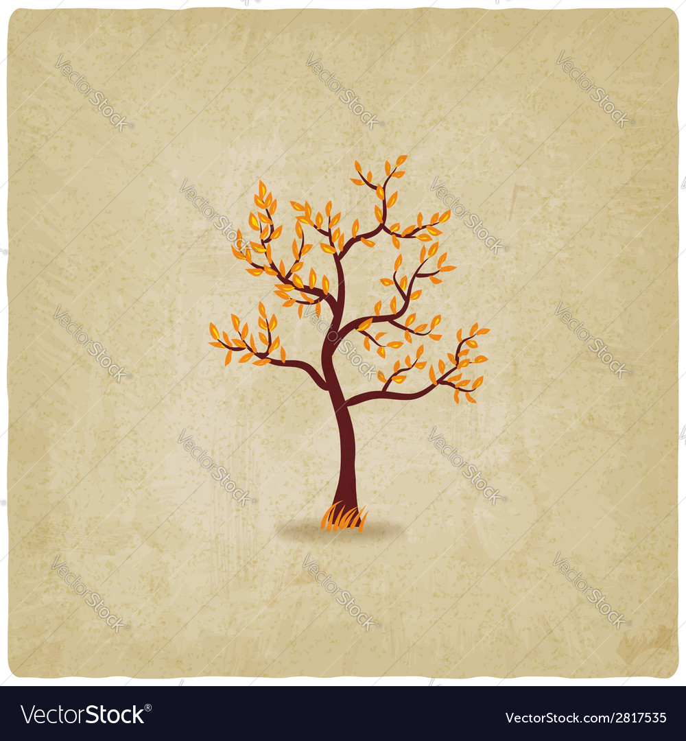 Autumn tree old background vector | Price: 1 Credit (USD $1)