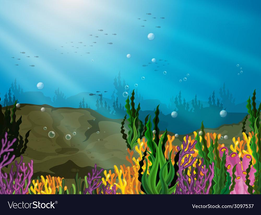 Underwater vector   Price: 1 Credit (USD $1)