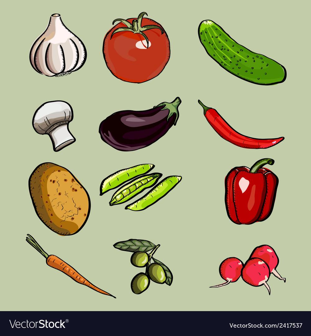 Vegetable set vector | Price: 1 Credit (USD $1)