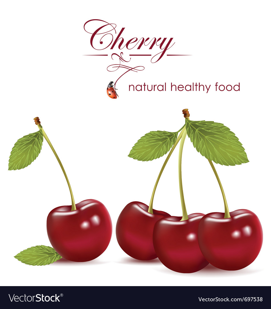 Cherry vector | Price: 3 Credit (USD $3)