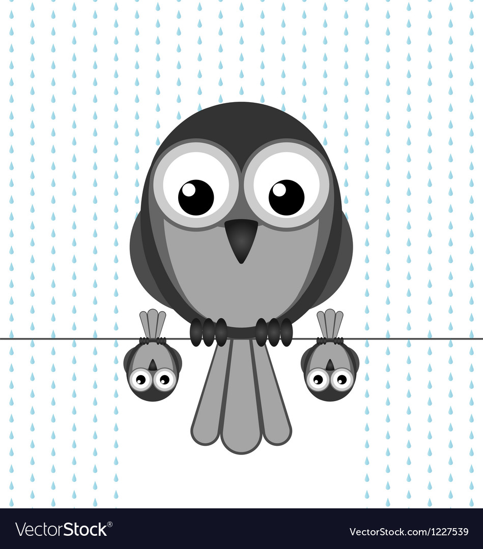 Bird shelter rain vector | Price: 1 Credit (USD $1)