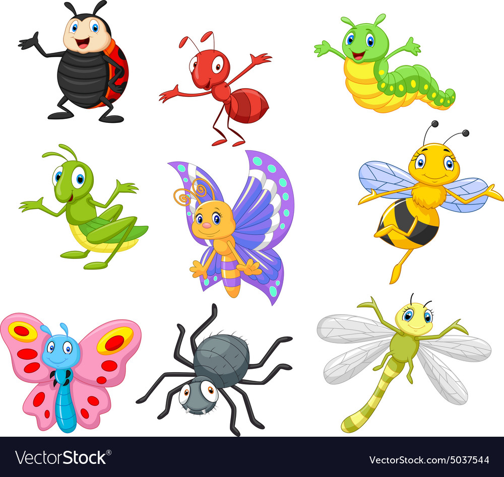 Cartoon insect vector