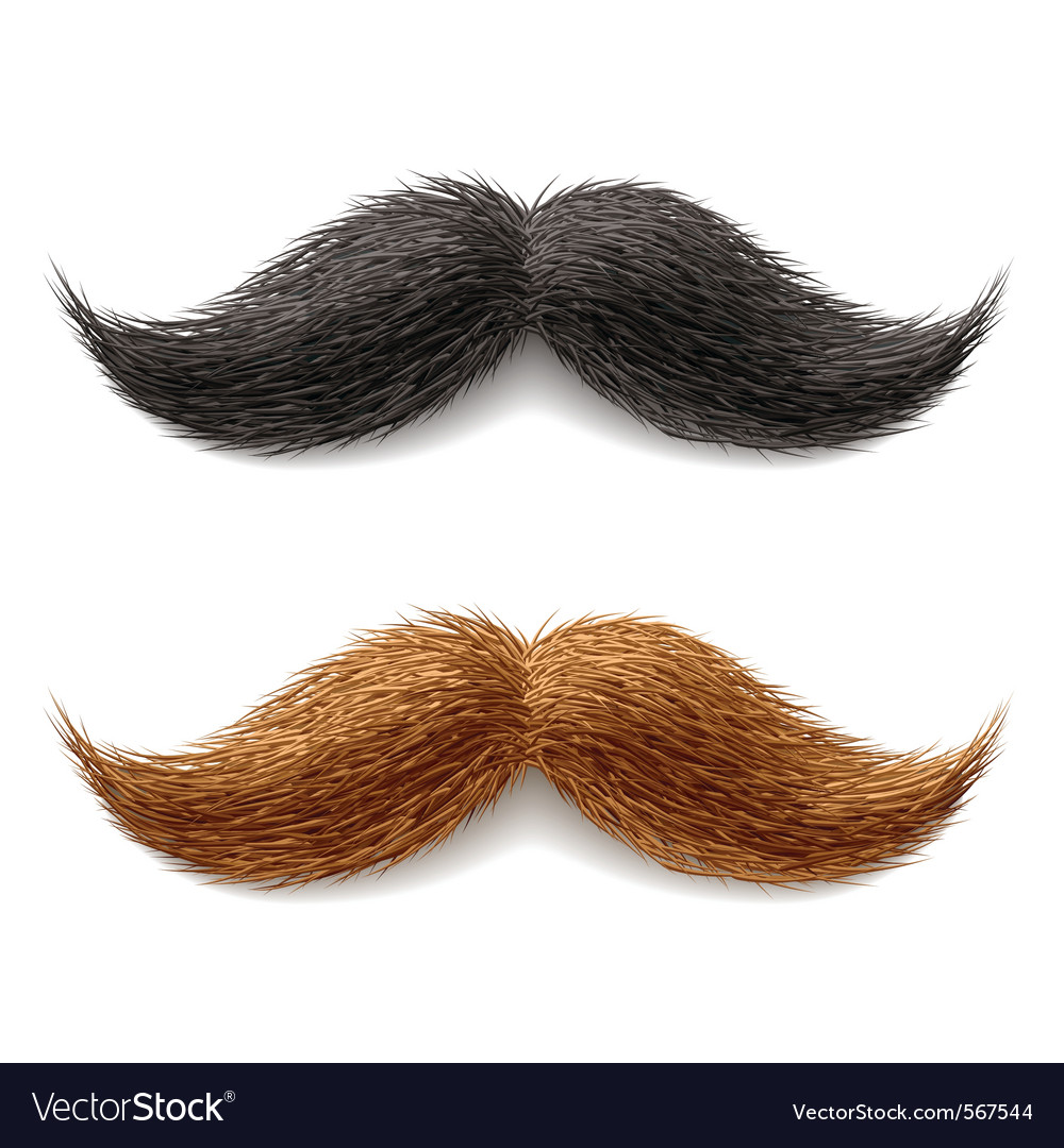 Fake mustaches vector | Price: 1 Credit (USD $1)