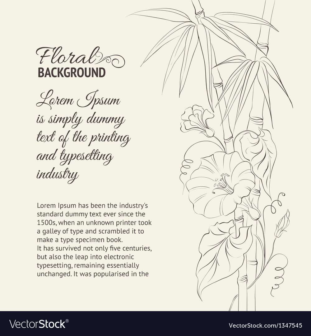 Bindweed flower and bamboo vector | Price: 1 Credit (USD $1)