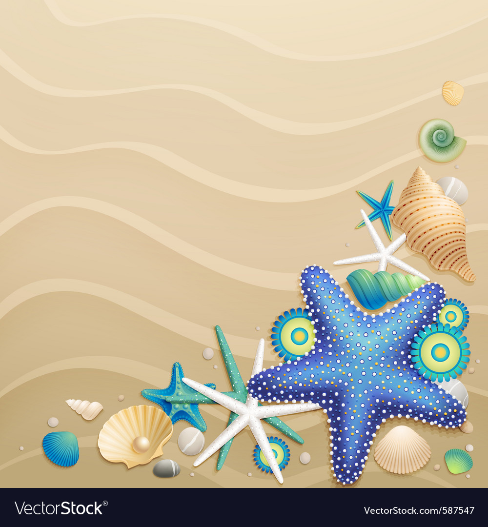 Shells and starfish vector | Price: 3 Credit (USD $3)