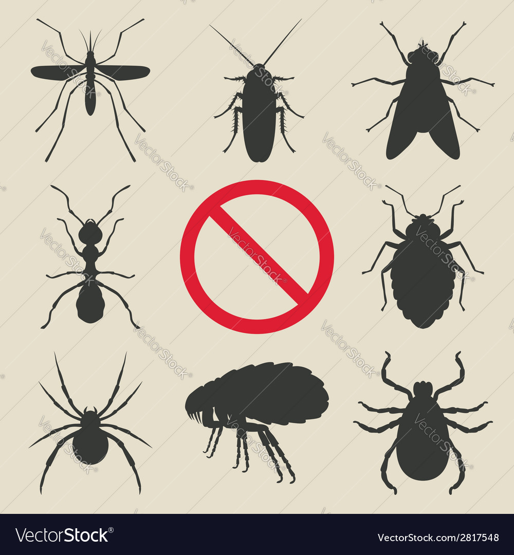 Silhouette insects set vector
