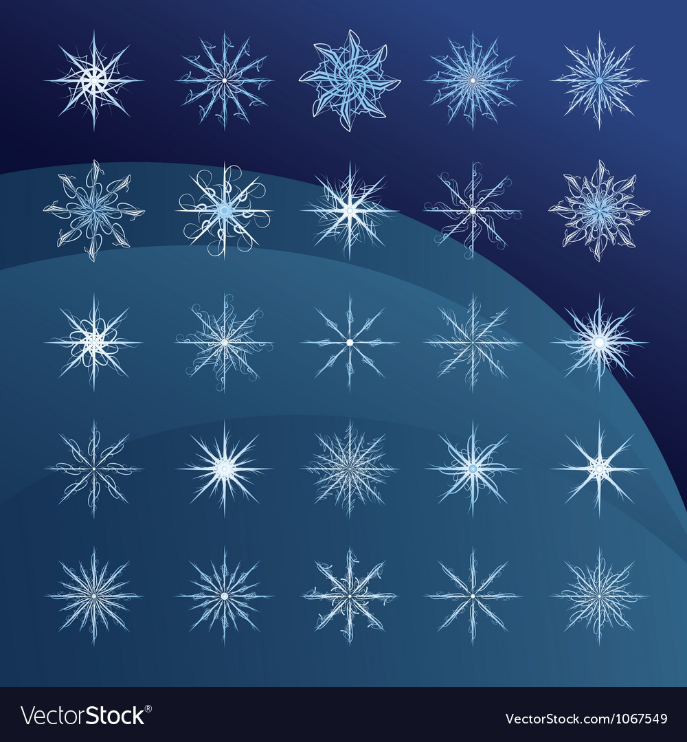 Elegant snowflakes complex pattern vector | Price: 1 Credit (USD $1)