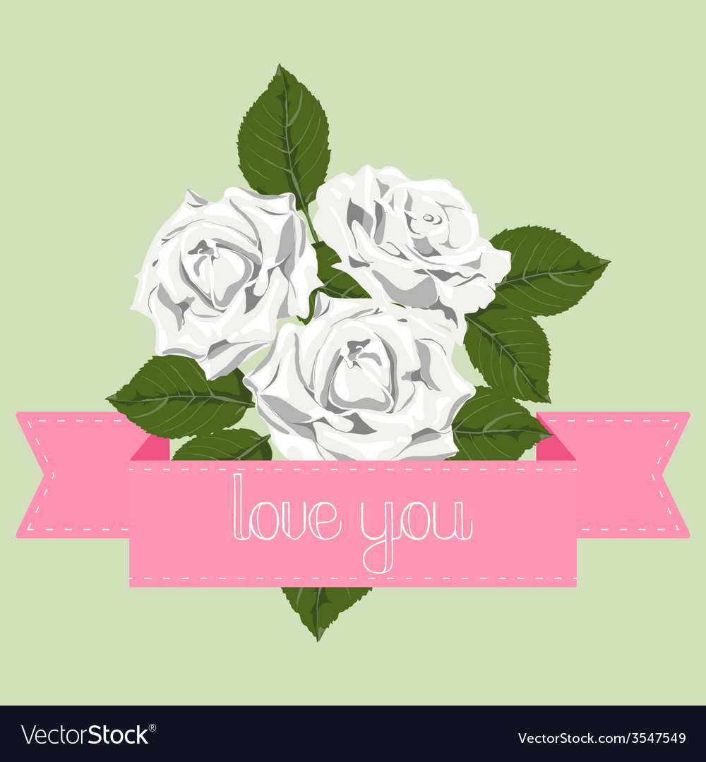 White roses with pink ribbon vector | Price: 1 Credit (USD $1)