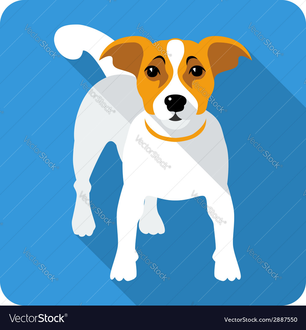 Dog jack russell terrier icon flat design vector | Price: 1 Credit (USD $1)