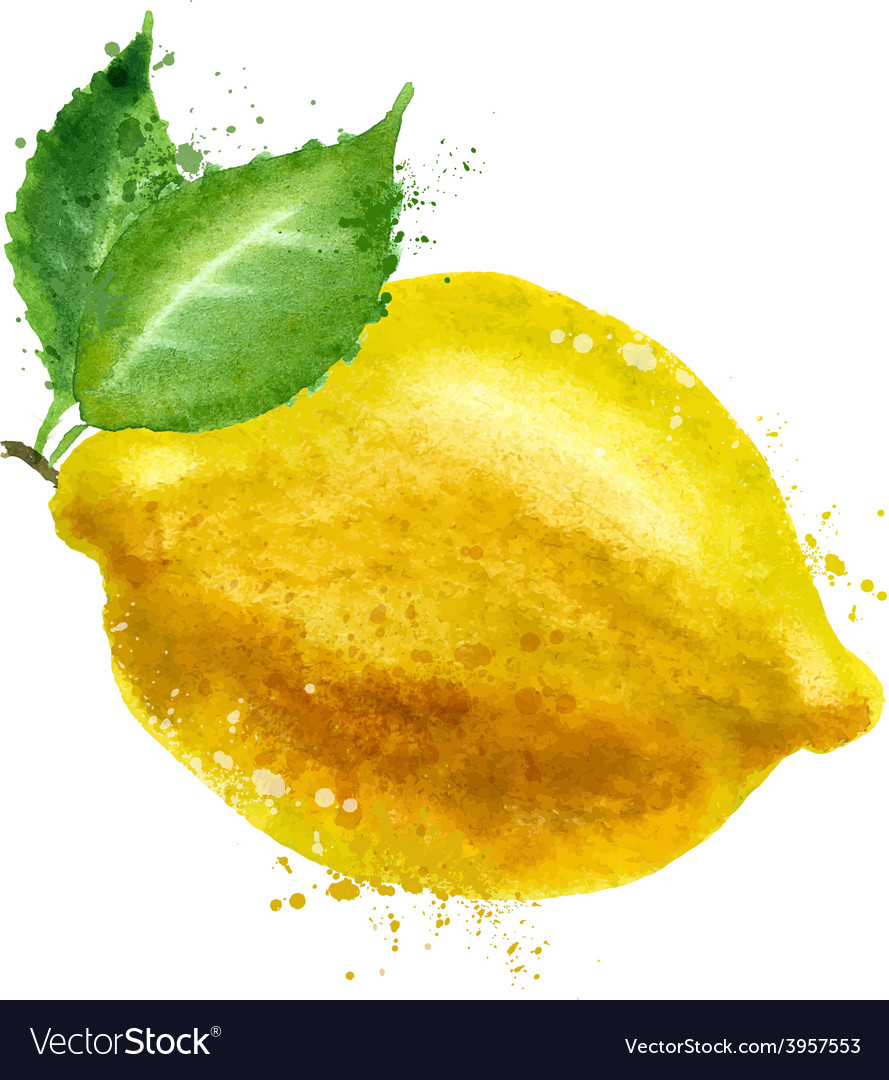 Lemon logo design template food or fruit vector | Price: 1 Credit (USD $1)