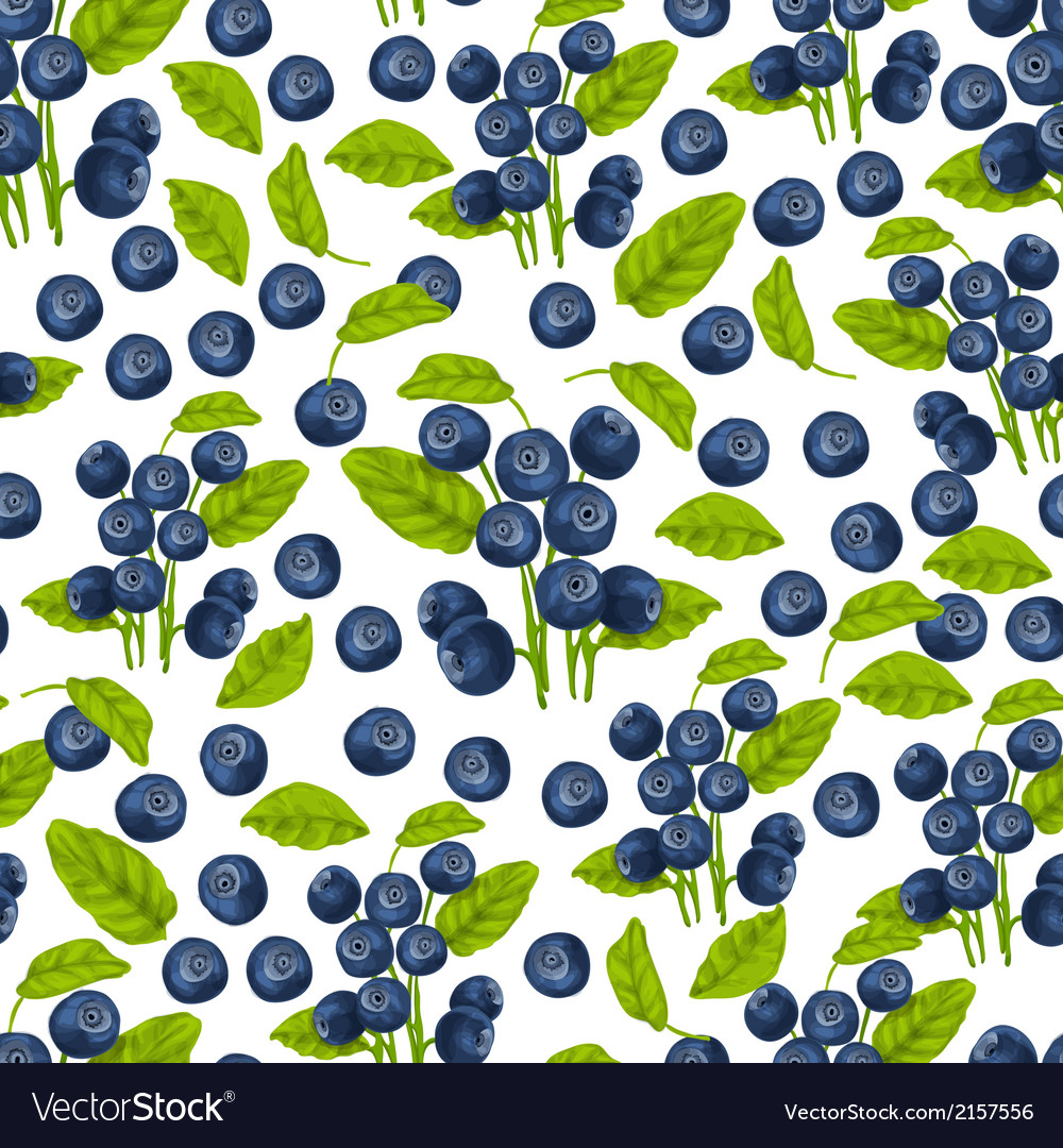 Blueberry seamless pattern vector | Price: 1 Credit (USD $1)
