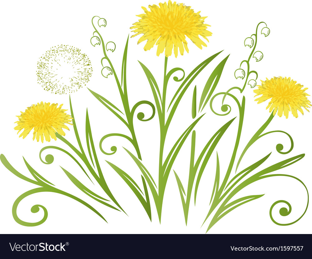 Dandelion meadow spring vector | Price: 1 Credit (USD $1)