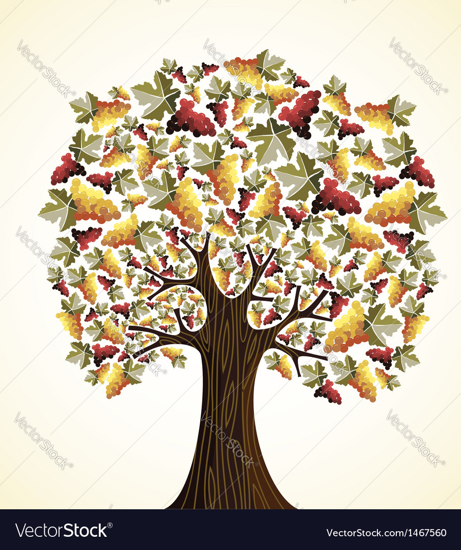 Wine and grapes tree vector | Price: 1 Credit (USD $1)