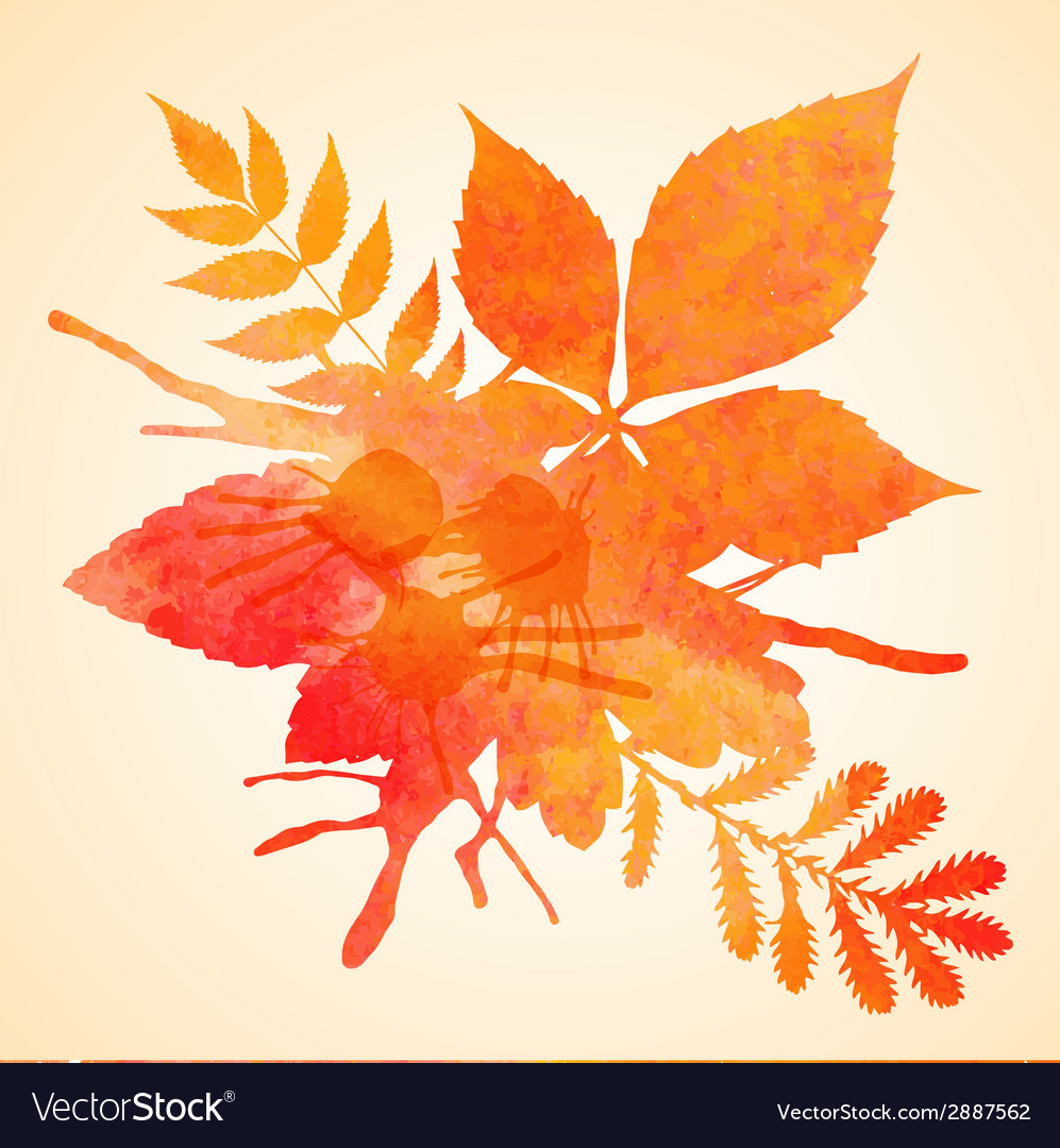 Orange watercolor painted autumn foliage vector | Price: 1 Credit (USD $1)