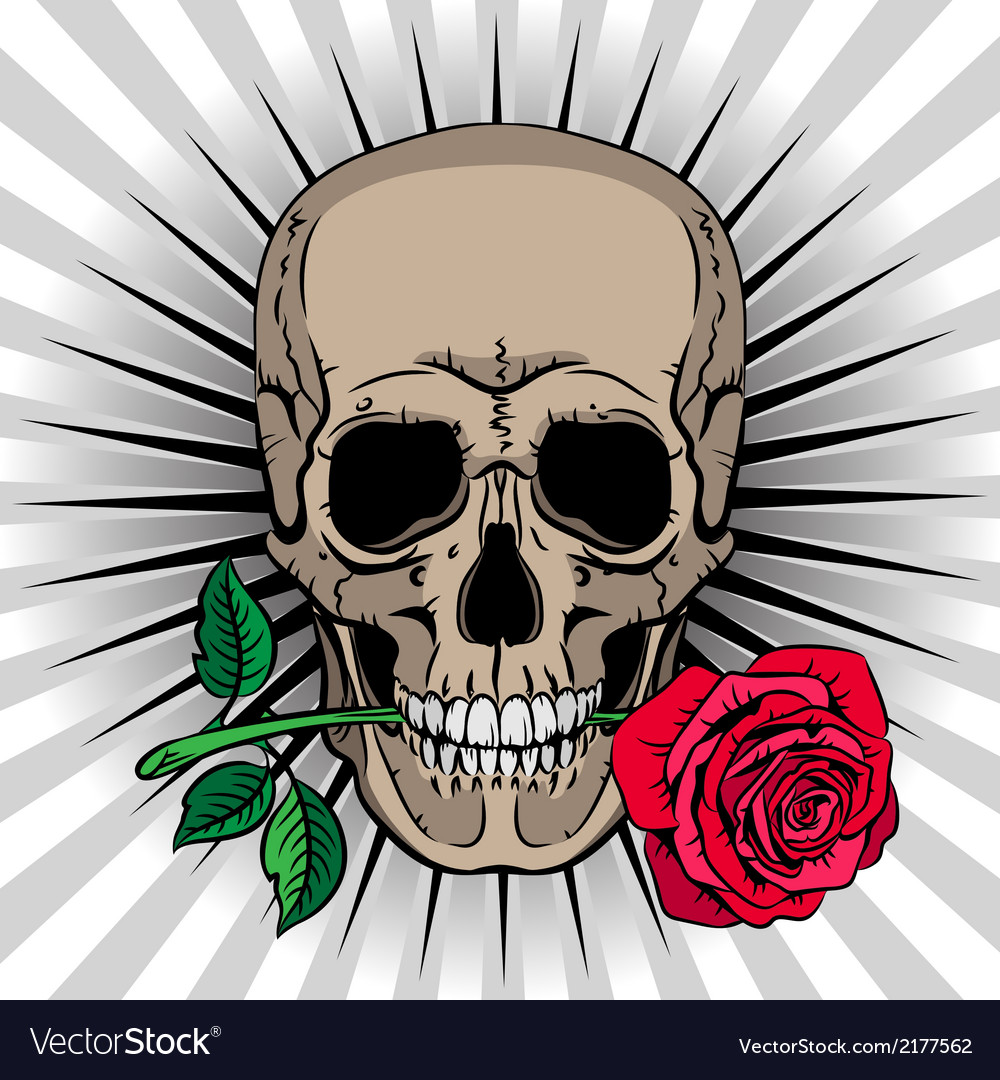 Skull holding a rose in his mouth vector | Price: 1 Credit (USD $1)