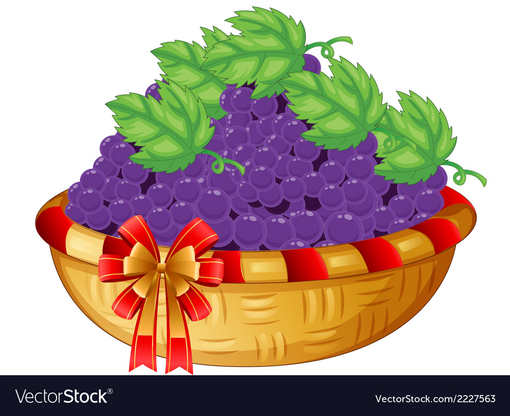 A basket of grapes vector | Price: 1 Credit (USD $1)