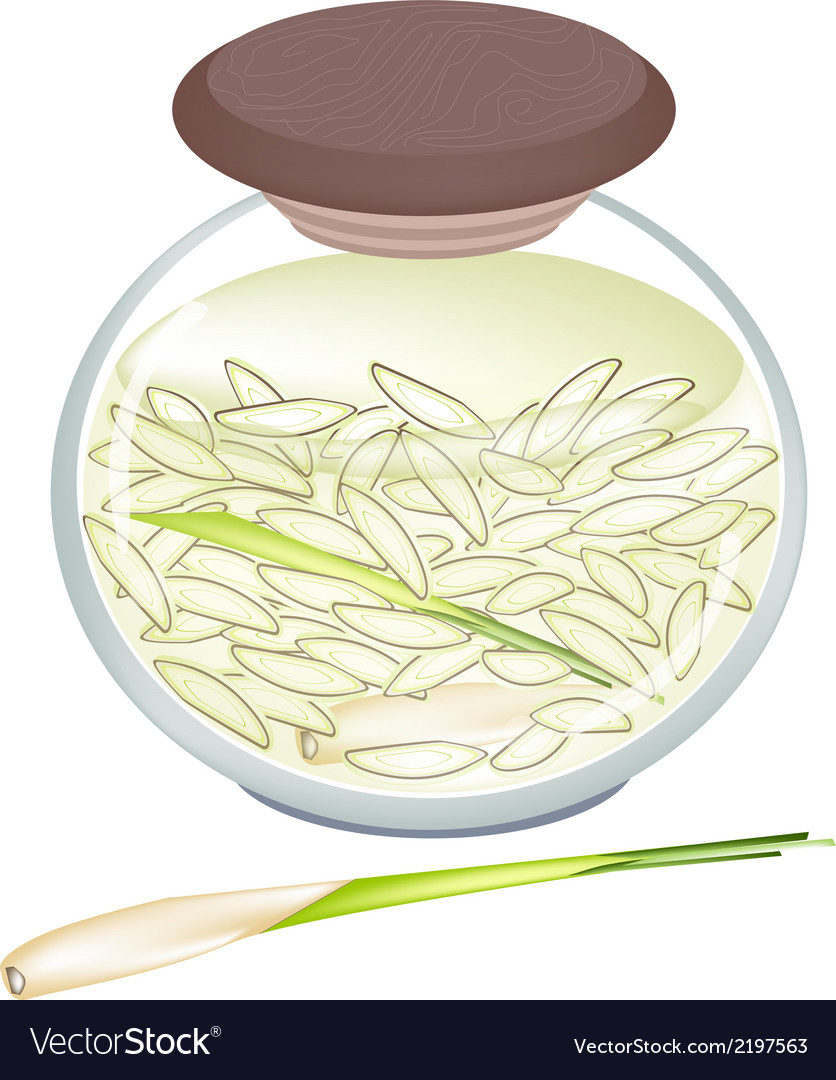 Jar of pickled slice lemongrass in malt vinegar vector | Price: 1 Credit (USD $1)