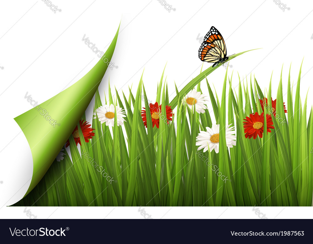 Spring background with flowers grass and a vector | Price: 1 Credit (USD $1)