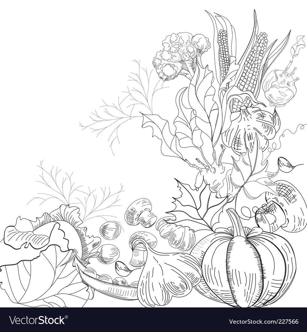Vegetable garden vector | Price: 1 Credit (USD $1)