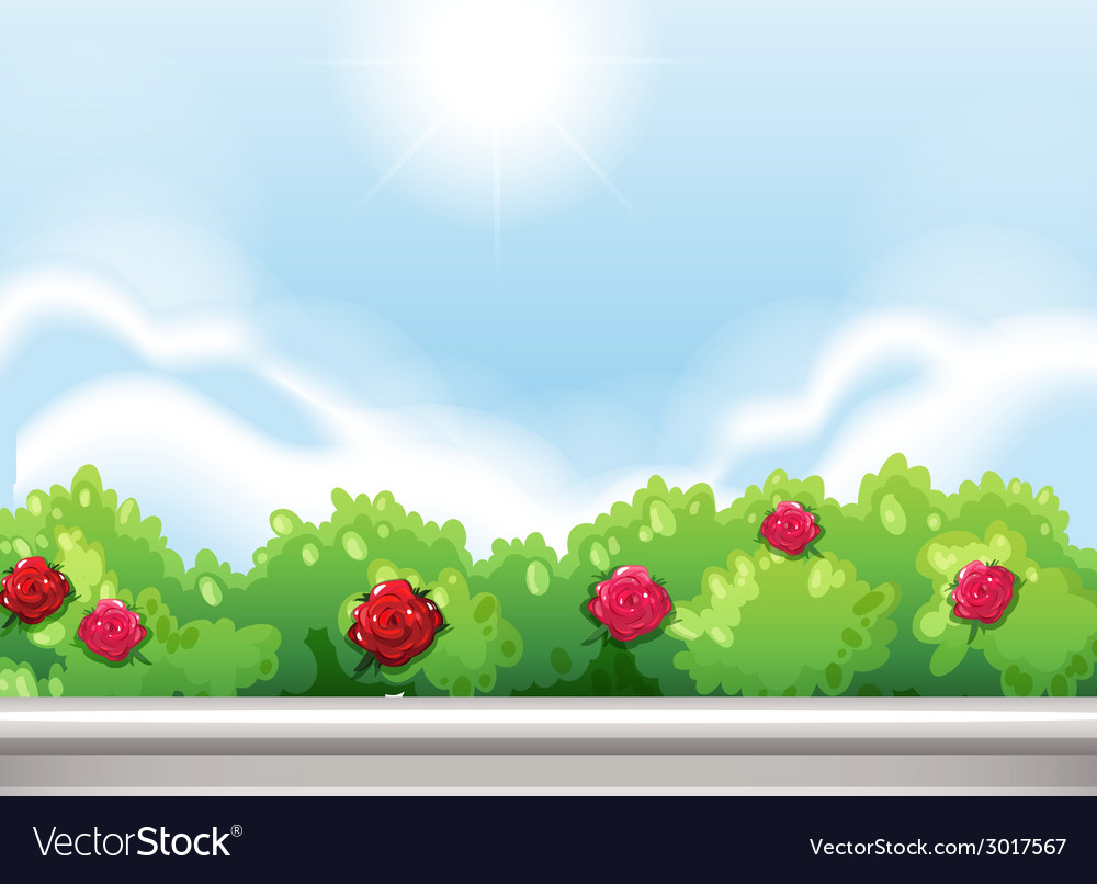 Roses at the park vector | Price: 1 Credit (USD $1)
