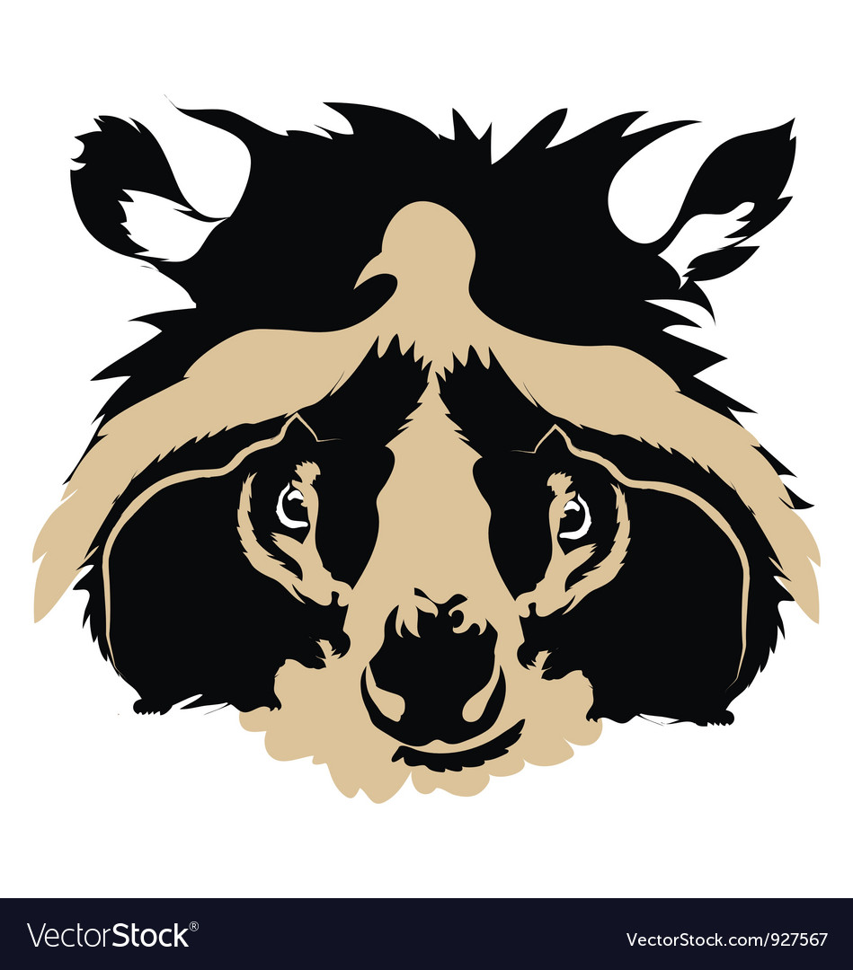 Squirrel eyed raccoon vector | Price: 1 Credit (USD $1)