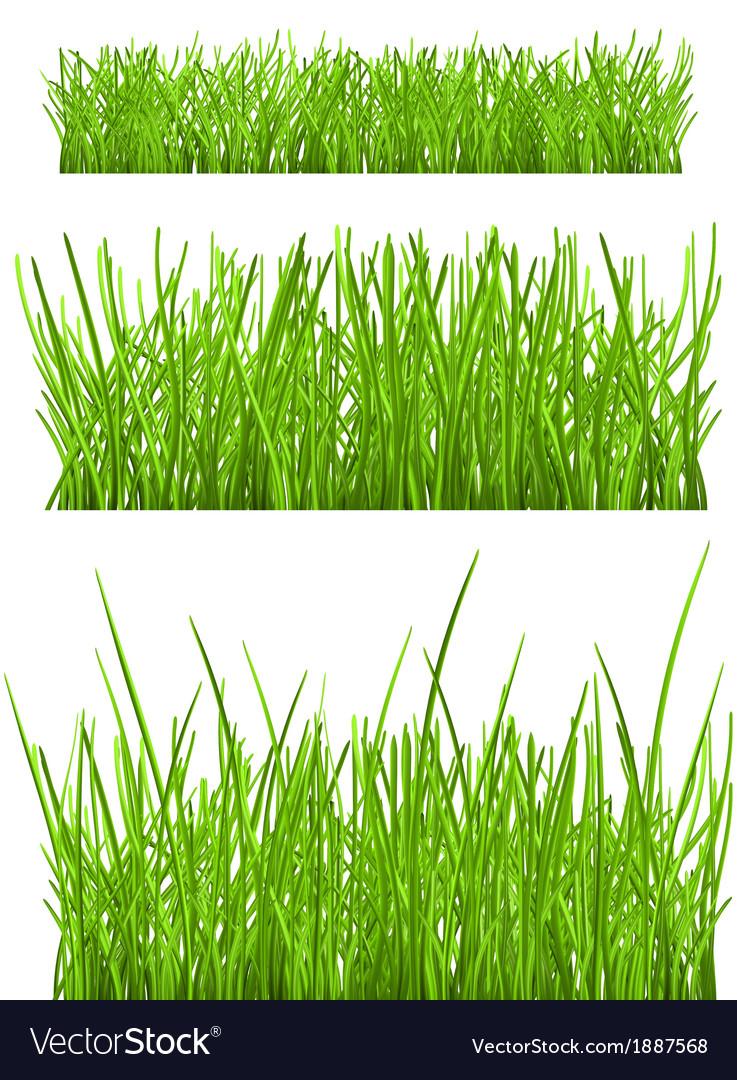 Green grass vector   Price: 1 Credit (USD $1)