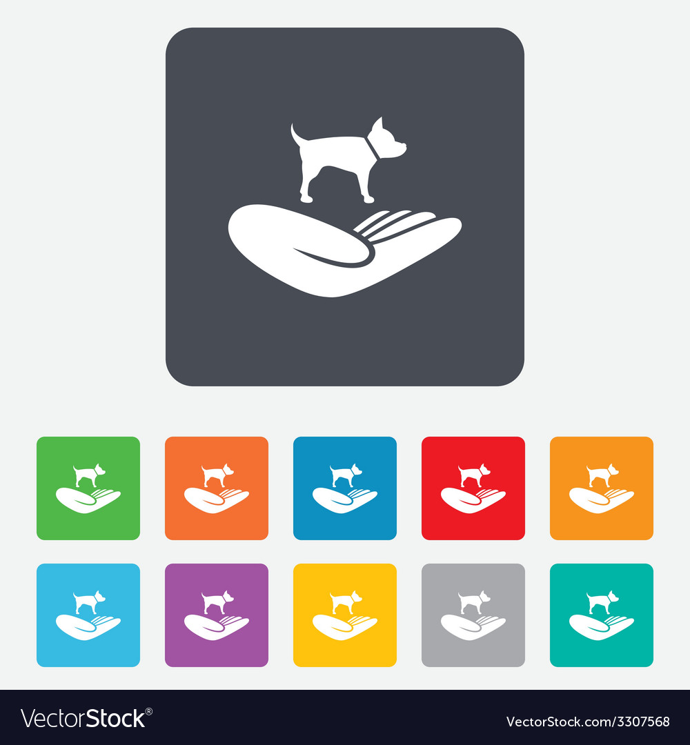 Shelter pets sign icon hand holds dog symbol vector | Price: 1 Credit (USD $1)