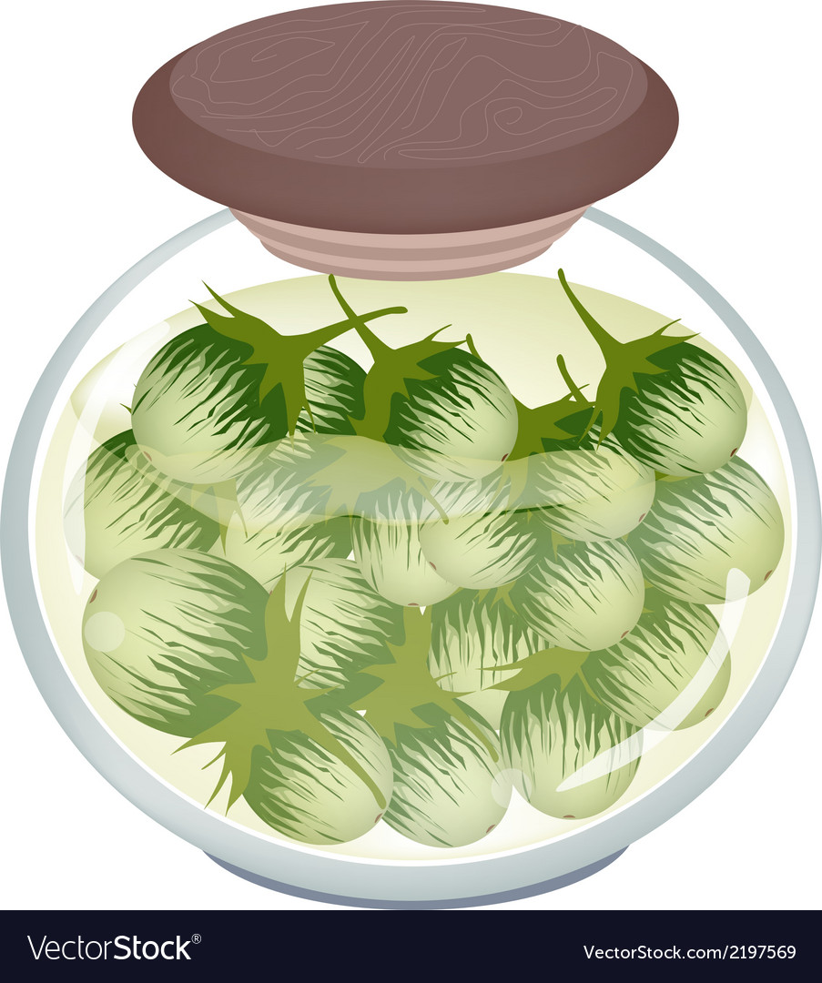 Jar of pikled green eggplants in malt vinegar vector | Price: 1 Credit (USD $1)