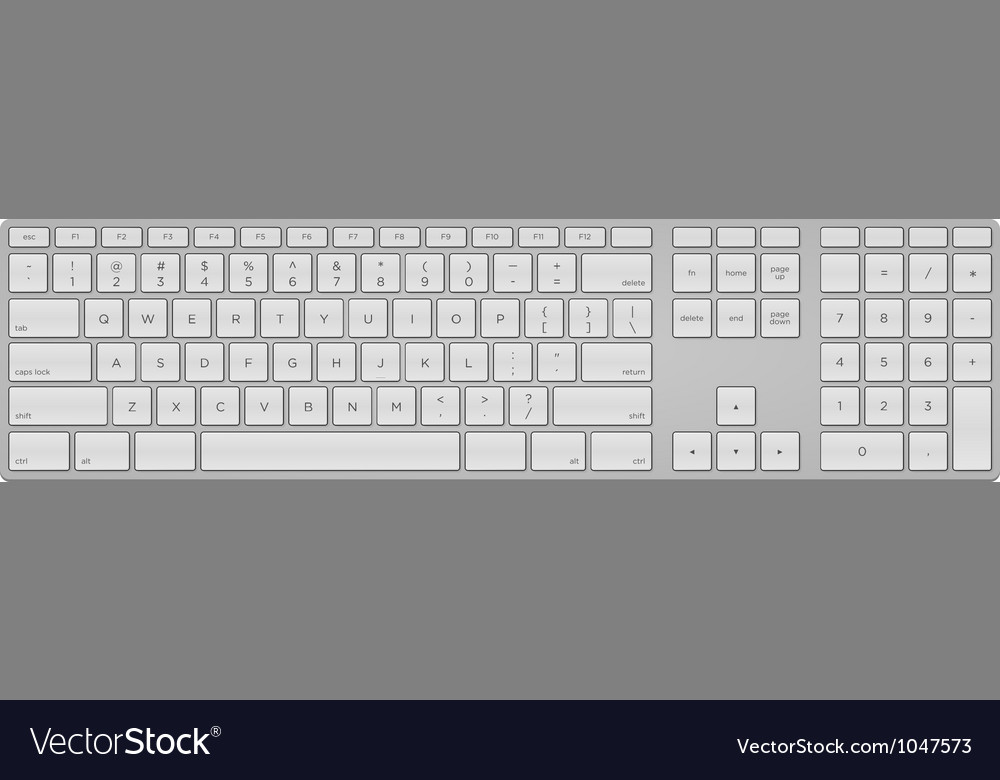 Standard us keyboard vector | Price: 1 Credit (USD $1)