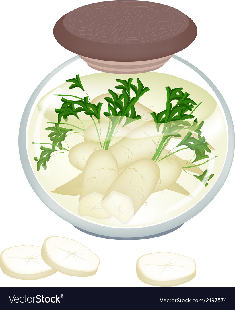 Jar of pickled white radish with malt vinegar vector | Price: 1 Credit (USD $1)