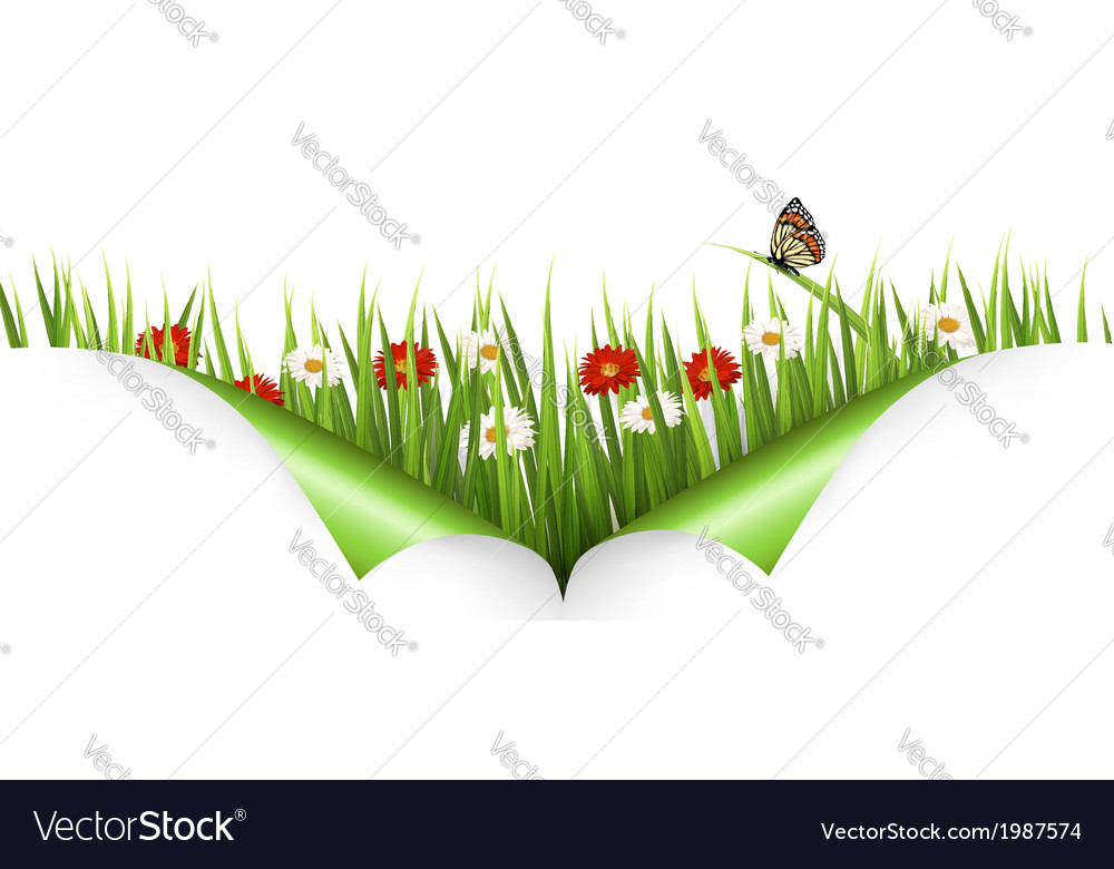 Spring background with flowers grass and a ladybug vector | Price: 1 Credit (USD $1)