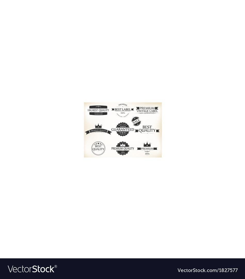 Satisfaction guarantee label and vintage premium vector | Price: 1 Credit (USD $1)