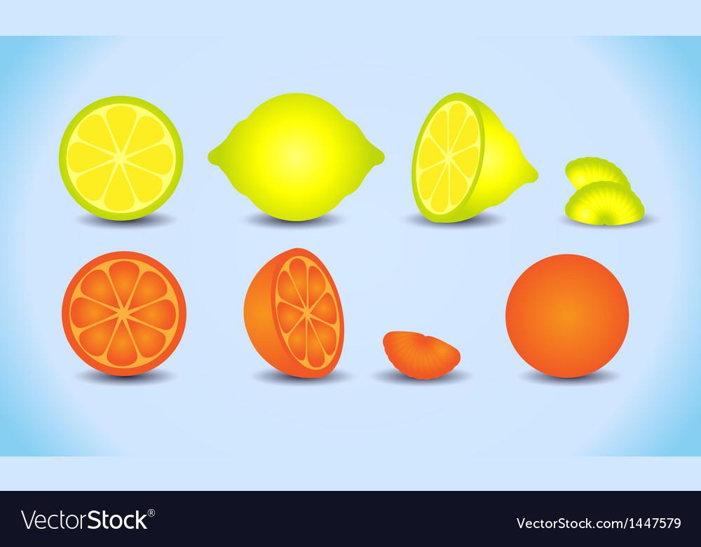 Lemon orange citrus set vector | Price: 1 Credit (USD $1)